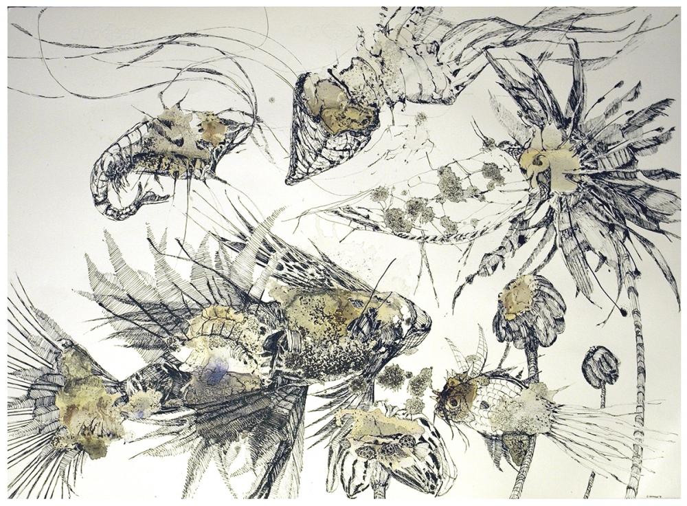 peixos, 2009 -CatiCanoves